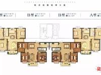 星和湾实小一中学区房,电梯3室两2厅104平方精装,